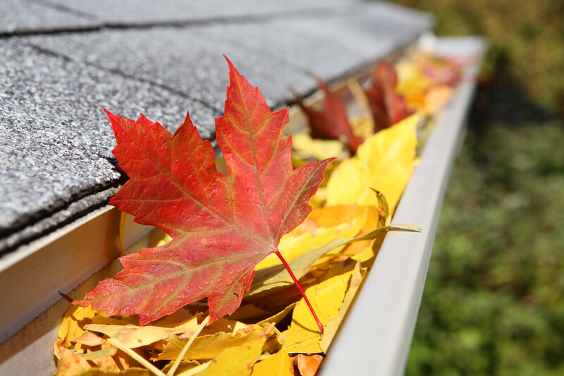 7-Point Home Fall Maintenance Check-list